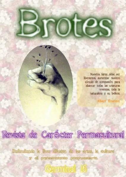 brotes16 - brotes16