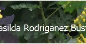 casilda - ¿Por qué recomiendo la obra de Casilda Rodrigáñez?