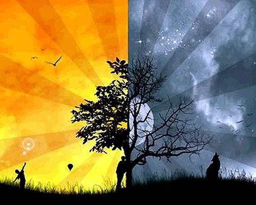 duality -
