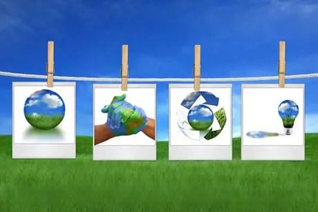 ecologia cotidiana - ecologia cotidiana