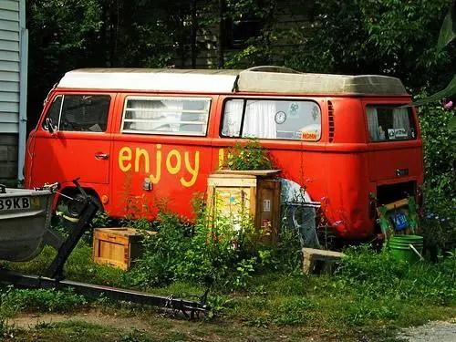 enjoy - enjoy