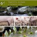 etikos - ETIKOS: veganismo, ecología y comercio justo