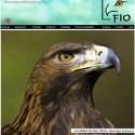 fio - Feria Internacional de Turismo Ornitológico 2011