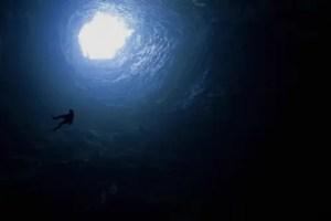 golondrinas descent 959970 xl - CREAR y profundizar en nosotros es fuente de felicidad