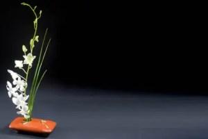 ikebana vases background - Fórmula zen para resolver problemas