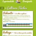infografia como montar huerto en casa - Cómo montar un huerto en casa (Infografía). Los viernes de Ecología Cotidiana