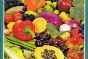 integral1 - Guía de la alimentación infantil natural: revista Integral extra