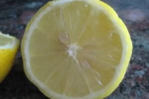 limon - Limpieza en casa con productos de toda la vida. Los viernes de Ecología Cotidiana
