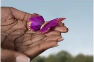 mariposas - Notas para el amor