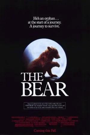 oso - el oso