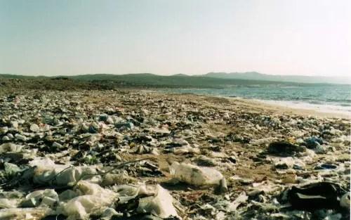 plastic -