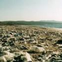 plastic - Bolsas de plástico y concienciación: ¿cuáles son nuestras prioridades?
