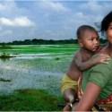 trabajo crianza y felicidad - Trabajo, crianza y felicidad: mejor fotografía ambiental