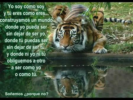 leonestanque24 - Educar para la Felicidad: otro mundo es posible 1/2