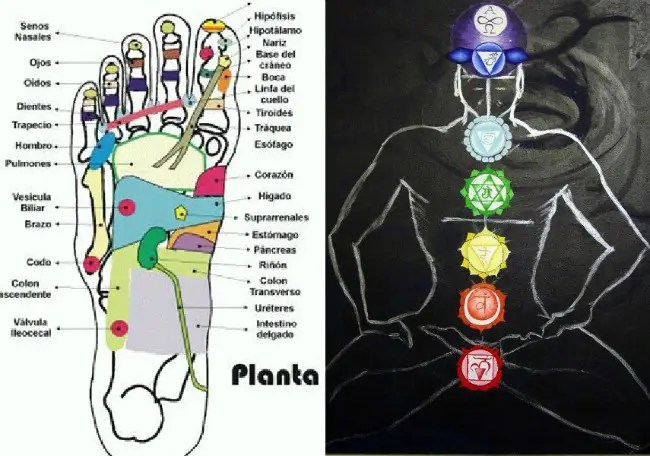 reflexologia holistica1 - Reflexología Holística aplicada a los chakras