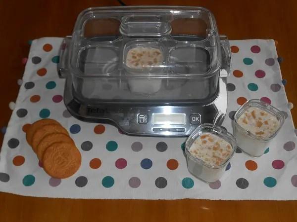 Yogur con galleta - Yogur casero con galletas