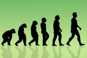 Evolucion Hunmana - H de Humano. El Abecedario de la Felicidad