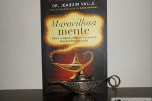 maravillosamente1 - maravillosaMENTE: libro para liberar tu mente y conseguir tus sueños reeducando la letra