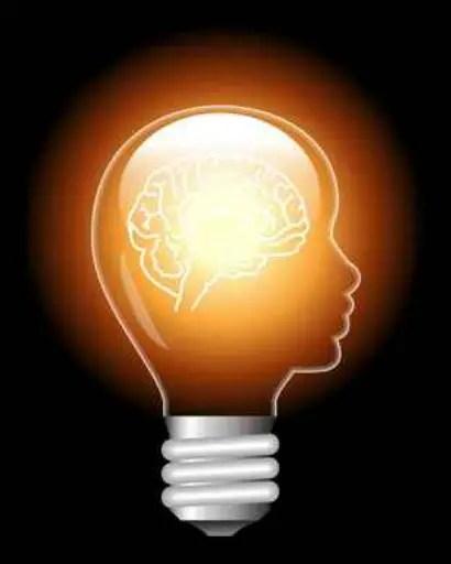 cerebro - Quien tiene un cuerpo, tiene un negocio