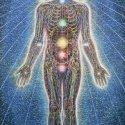 Alex Grey Psychic Energy Sy - ANATOMÍA SUTIL del ser humano: glándulas, chakras y circuito energético