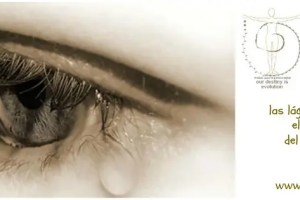 23febrero - Despierta tu poeta interior: mis lágrimas mi lenguaje del alma