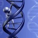 niñoADN - El ADN transmite la memoria de nuestros antepasados, nuevo estudio científico