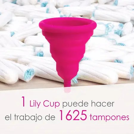 Lily Cup 1 - Lily Cup 1