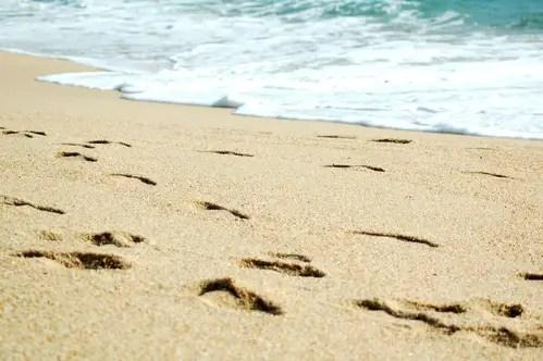 caminar y desconectar