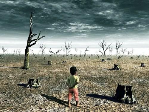 efectos del cambio climático en la salud mental y física - efectos del cambio climático en la salud mental y física