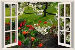 climatizadores evaporativos aire fresco y sano