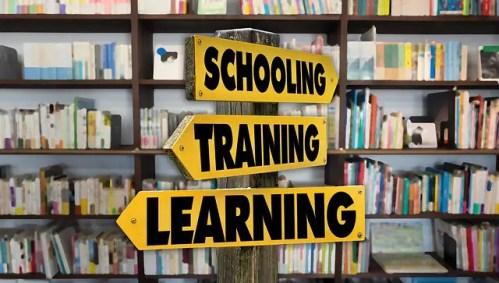 aprendizaje natural aprendizaje tradicional - aprendizaje natural aprendizaje tradicional