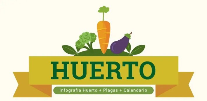 Infografía huerto - Cuándo sembrar las hortalizas y las verduras [INFOGRAFÍA]