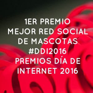 Ganadora Premios Día de Internet 2016