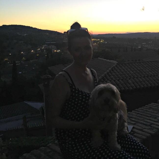 viajar con perro a Toledo