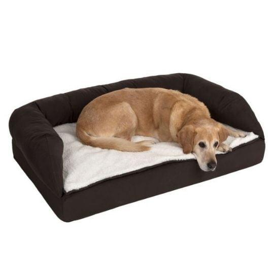 camas para perros ortopédicas