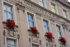 Visitar Viena