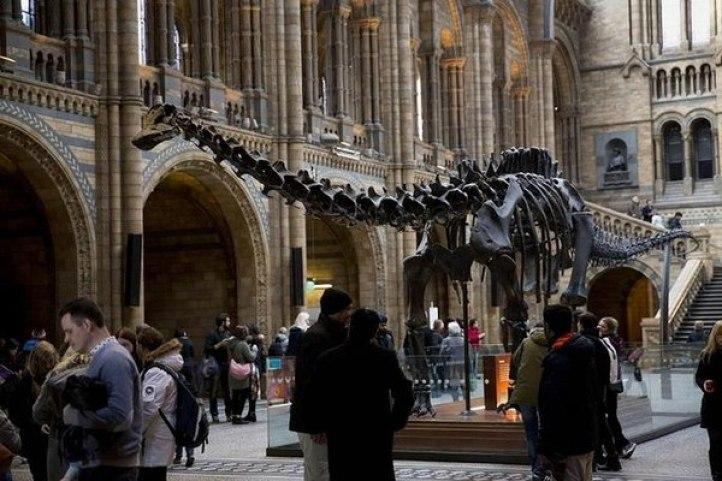 El Museo de Historia Natural, Londres