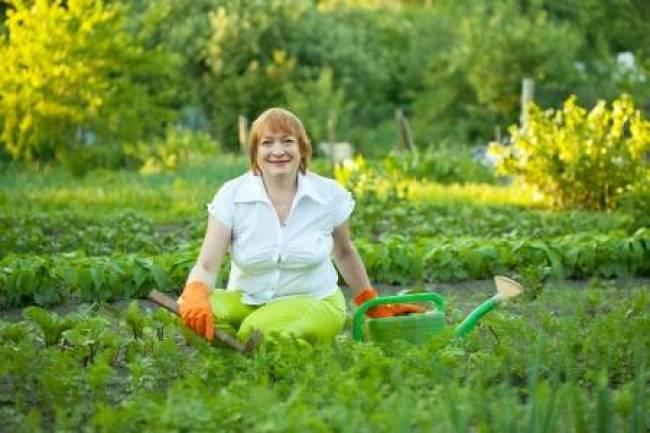 no hay excusas para aprender hacer huertos o jardinería
