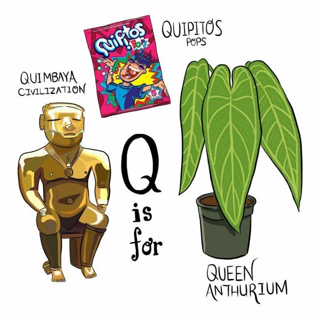 abecedario colombiano el bogotano q
