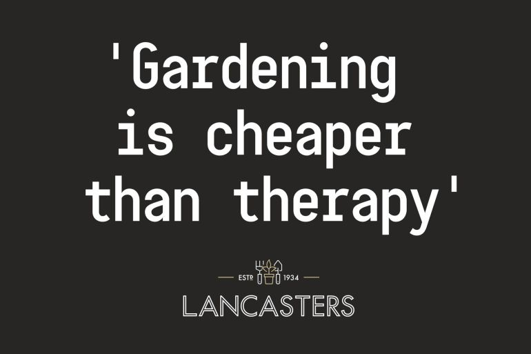 Lancasters_Therapy