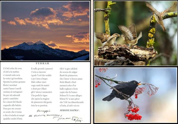 Poesia di Febbraio Simone Daprà