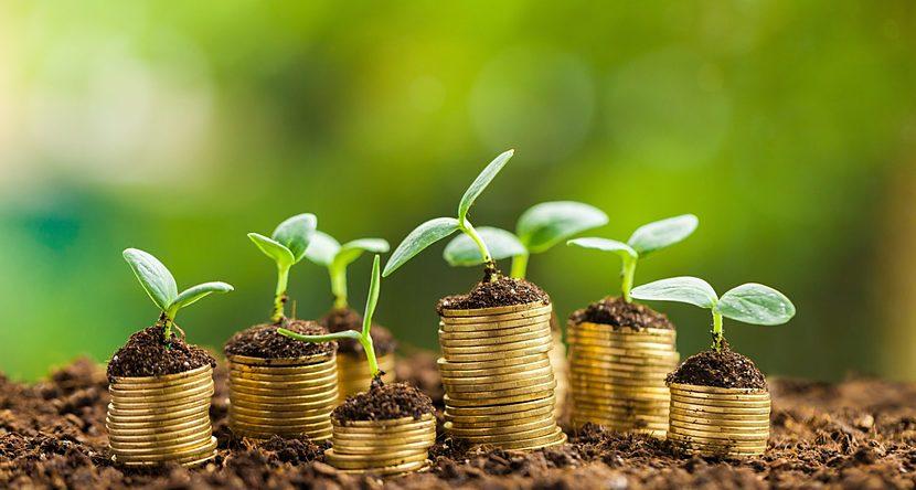 dinero es igual a crecimiento