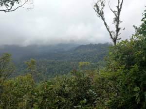 Sendero Los Quetzales - Boquete, Chiriquí