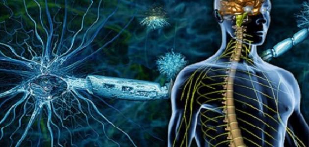 ما هو مرض تصلب الأعصاب