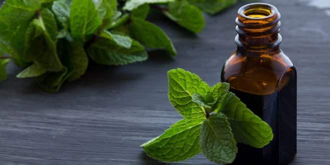 5 إستخدامات علاجية غير متوقعة للنعناع