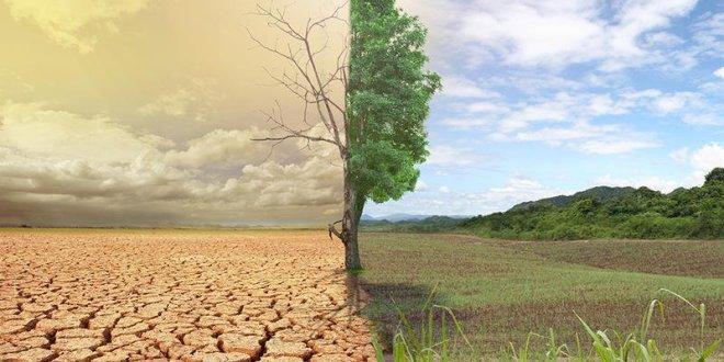 تكنولوجيا .. علماء يحددون الطريقة الوحيدة لتجنب كارثة عالمية