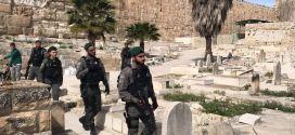 فلسطين .. مقابر القدس شهود على التهويد .. دراسة