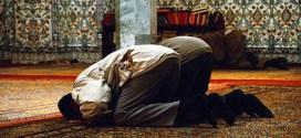 شبكة المقالات .. الصلاة قوة روحية ونفسية
