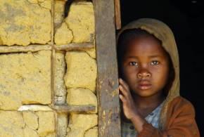 أكثر من 820 مليون شخص في العالم يعانون الجوع كل يوم .. الشبكة نت