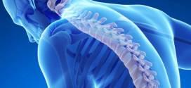 صحة الاسرة .. هشاشة العظام يجتاح البشرية